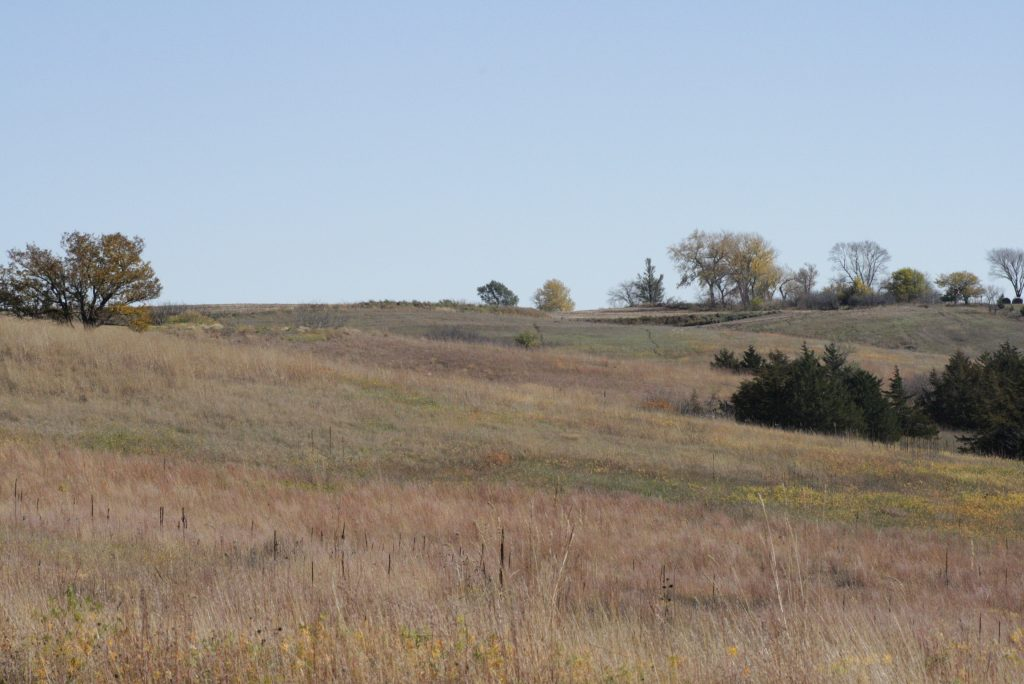Oak Grove Prairie East