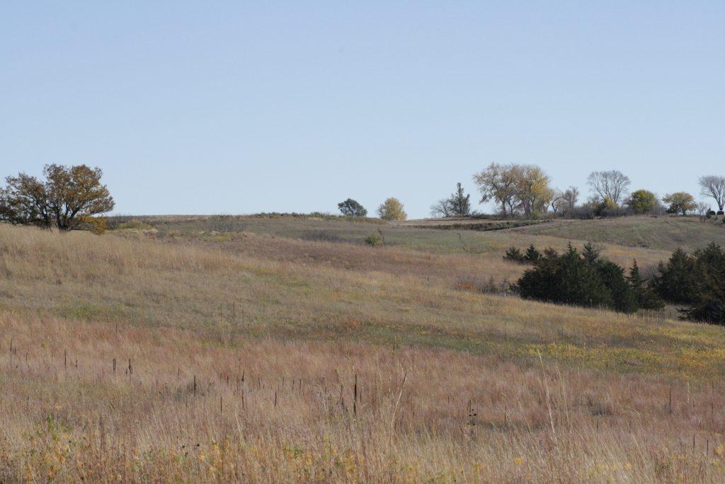 Oak Grove Prairie East